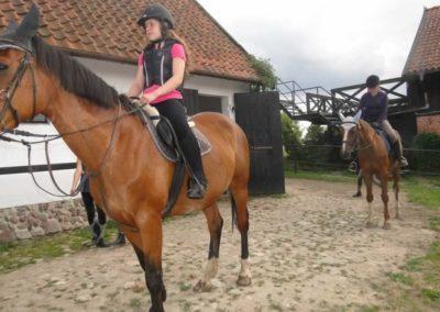 oboz-konie-2015-1-0147