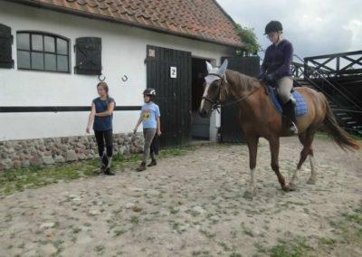 oboz-konie-2015-1-0148