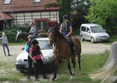 oboz-konie-2015-1-0164