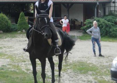 oboz-konie-2015-1-0165