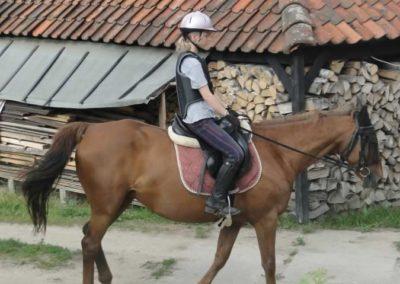 oboz-konie-2015-1-0166