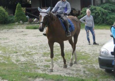 oboz-konie-2015-1-0169