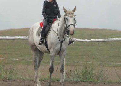 oboz-konie-2015-2-0001