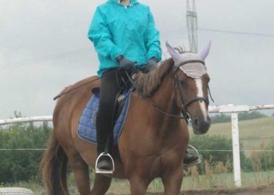 oboz-konie-2015-2-0012