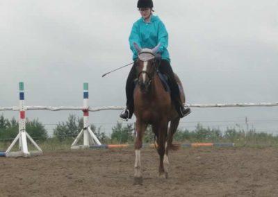 oboz-konie-2015-2-0016