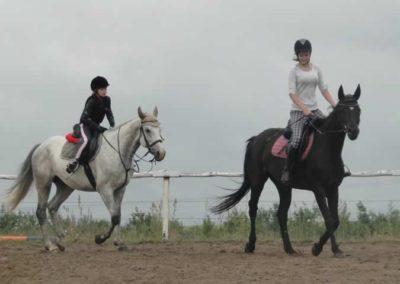 oboz-konie-2015-2-0018