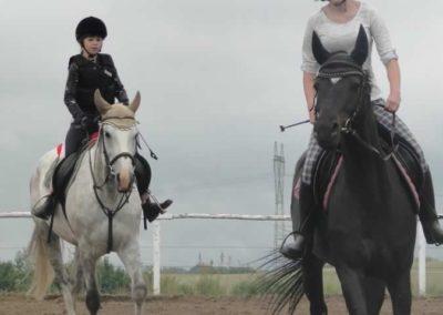 oboz-konie-2015-2-0019
