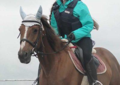 oboz-konie-2015-2-0020