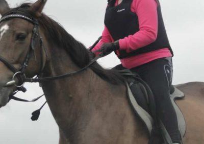 oboz-konie-2015-2-0021