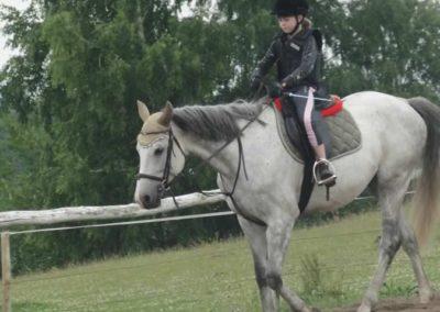 oboz-konie-2015-2-0034