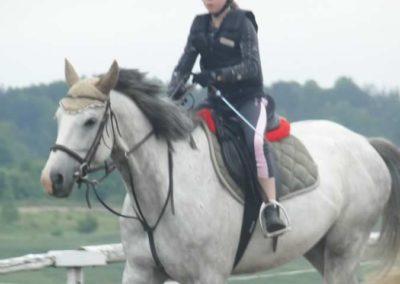 oboz-konie-2015-2-0038