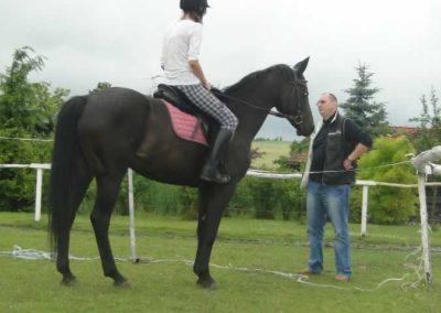 oboz-konie-2015-2-0050