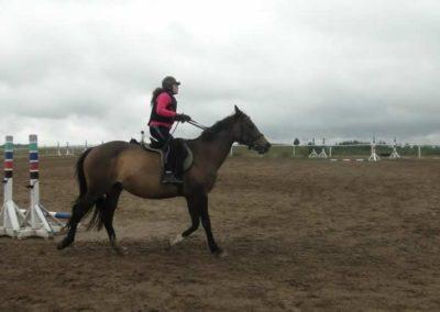 oboz-konie-2015-2-0051