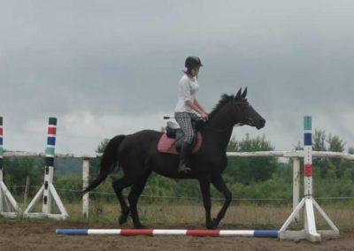 oboz-konie-2015-2-0052