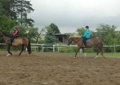 oboz-konie-2015-2-0054