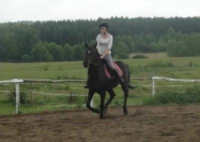 oboz-konie-2015-2-0055