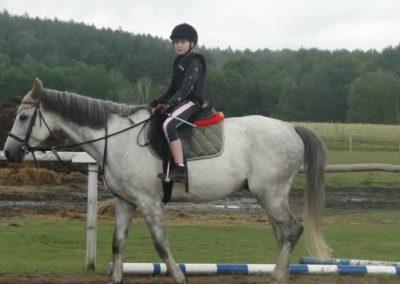oboz-konie-2015-2-0057