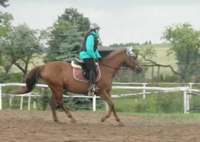 oboz-konie-2015-2-0061