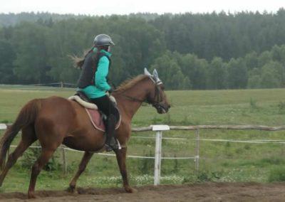 oboz-konie-2015-2-0062