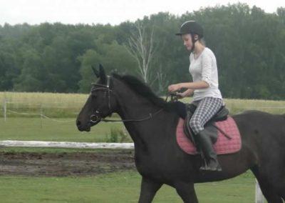 oboz-konie-2015-2-0063