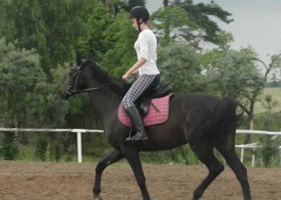oboz-konie-2015-2-0064