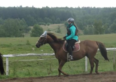 oboz-konie-2015-2-0066
