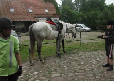 oboz-konie-2015-2-0067