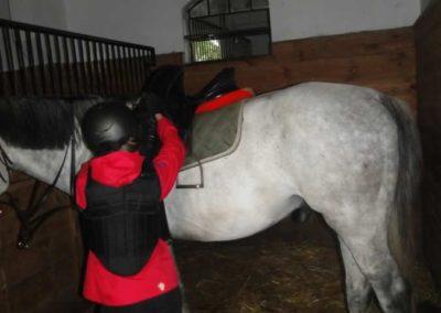 oboz-konie-2015-2-0071