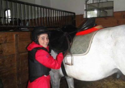 oboz-konie-2015-2-0072