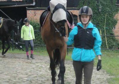 oboz-konie-2015-2-0091