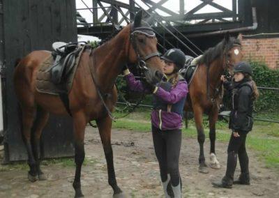 oboz-konie-2015-2-0094