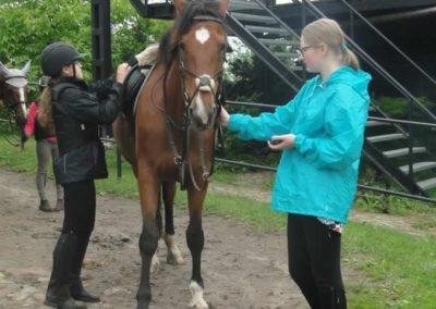 oboz-konie-2015-2-0097