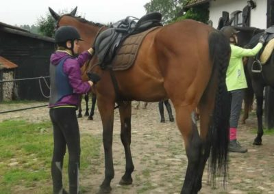 oboz-konie-2015-2-0099