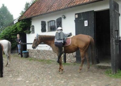 oboz-konie-2015-2-0101