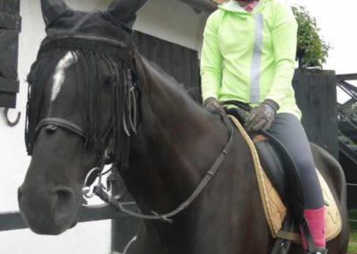 oboz-konie-2015-2-0109
