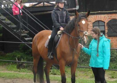 oboz-konie-2015-2-0111