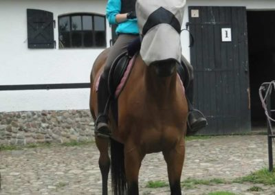 oboz-konie-2015-2-0115