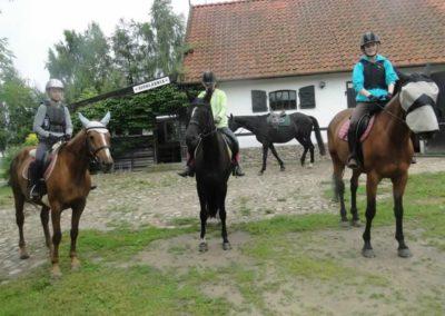 oboz-konie-2015-2-0117