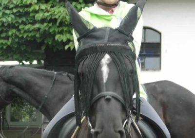 oboz-konie-2015-2-0118
