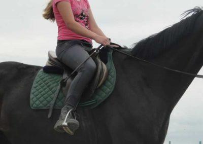 oboz-konie-2015-2-0119