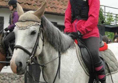 oboz-konie-2015-2-0121