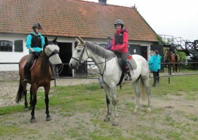 oboz-konie-2015-2-0122