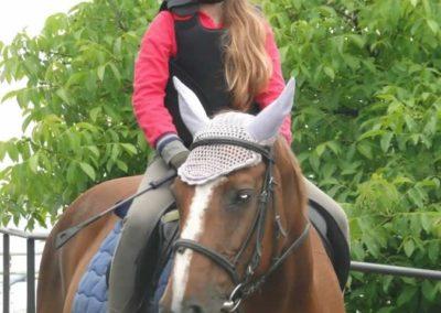 oboz-konie-2015-2-0126