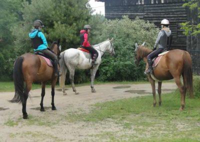 oboz-konie-2015-2-0130