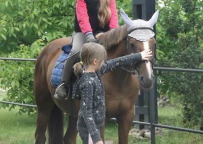 oboz-konie-2015-2-0134