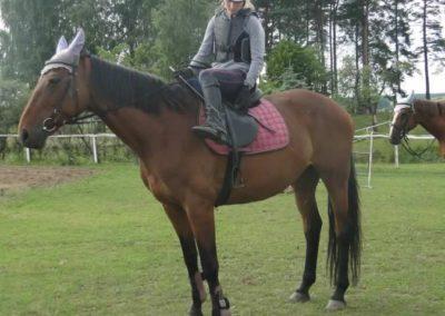 oboz-konie-2015-2-0191