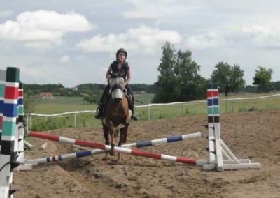 oboz-konie-2015-2-0195