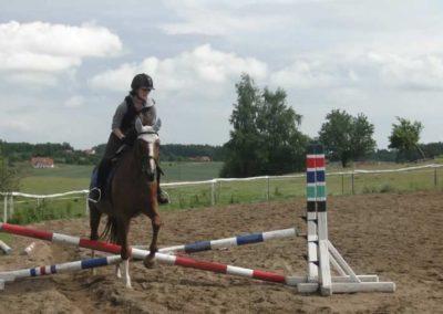 oboz-konie-2015-2-0196