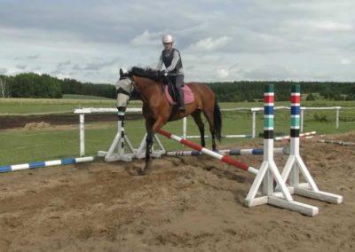 oboz-konie-2015-2-0198