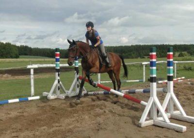 oboz-konie-2015-2-0199